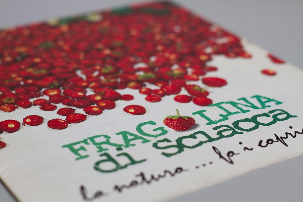 Fragolina di Sciacca